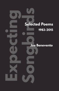 Joe Benevento | Expecting Songbirds