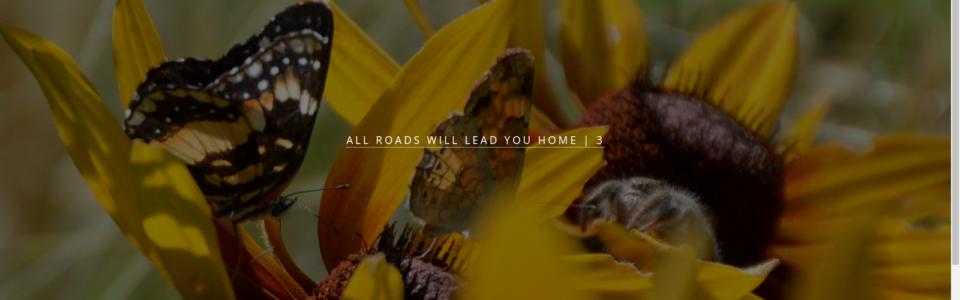 all roads 3