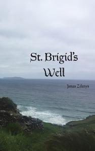 Jonas Zdanys | St. Brigid's Well